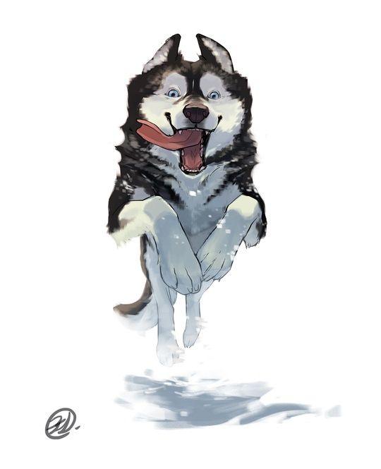 Dog Series - Husky by Elisa Kwon