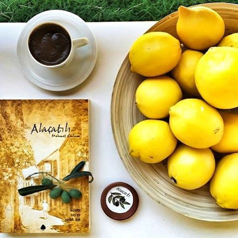 #günaydın bugün #alacatikuytu restoran da #yeniyıl şenlikleri kutlanıyor. Sıcacık ve güzel bir gün olacağı şimdiden belli. :-)
