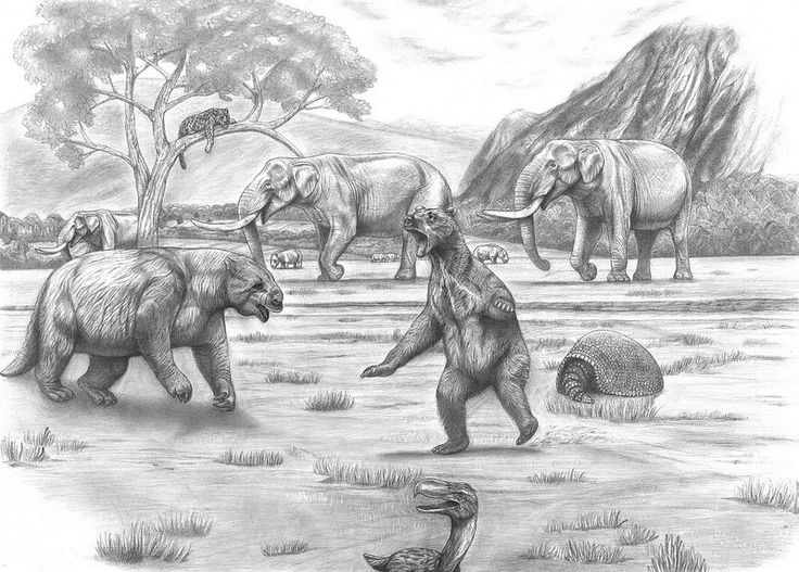 the prehistoric safari the pleistocene southern south americapatagonia best prehistoric ideas