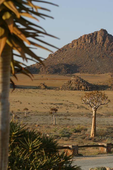 Goecap Reserve, South Africa   Christine Vadai