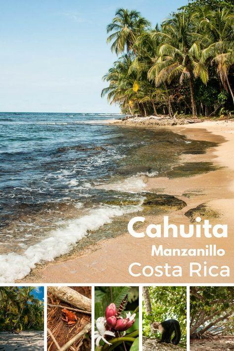 Partez à la découverte de la côte Caraïbes au Costa Rica. Puerto Limon et son carnaval, les parcs naturels de Cahuita et Manzanillo. Plages de rêves et animaux !