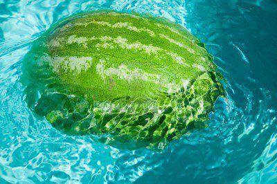 Waatlemoen / somer / vakansie / kan jy nog onthou / remember this/ water melon