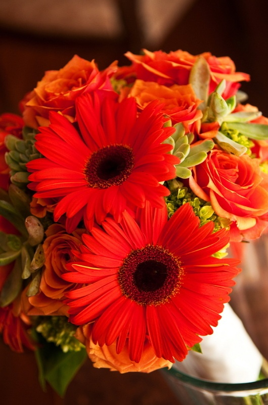 Fall Gerbera Daisy Bouquet Best 25+ Gerber...