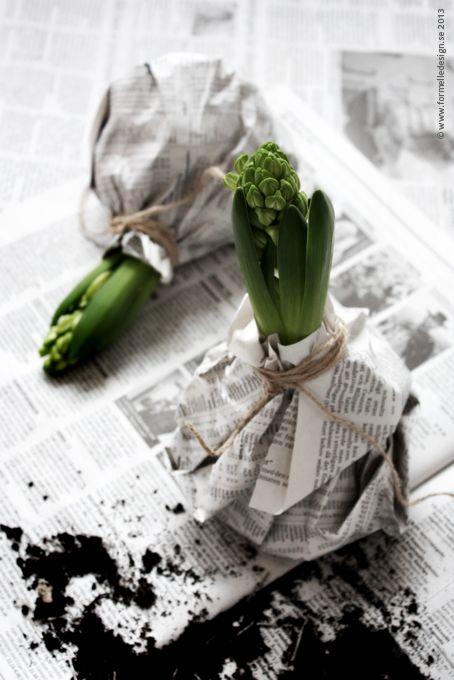 Haal het voorjaar in huis! Wikkel er een oude krant en stoer touw omheen en klaar!