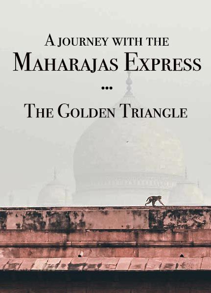 Want to experience the Golden Triangle, India? This was my second time and a very different experience thanks to a trip with the Maharajas Express, a luxury train in India. #incredibleindia #india #goldentriangle #trainjourney via @nightelephant