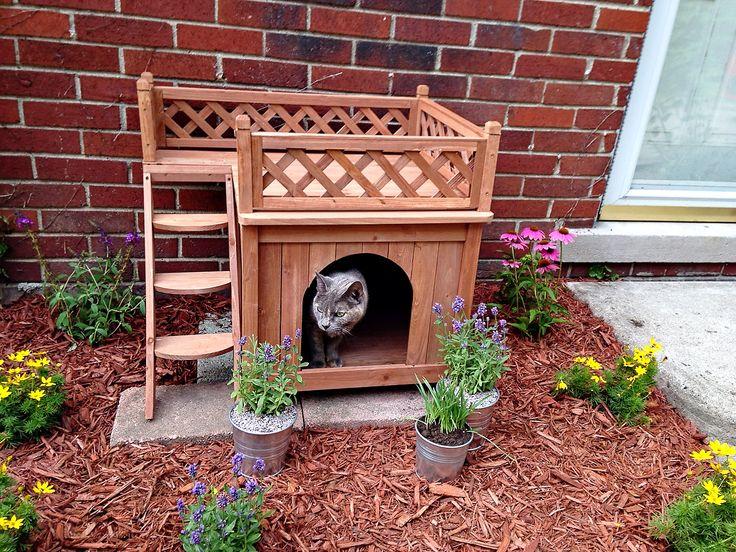 Üst Teraslı Ahşap Kedi Kulübesi  Evi