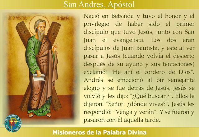 MISIONEROS DE LA PALABRA DIVINA: SANTORAL - SAN ANDRES APÓSTOL