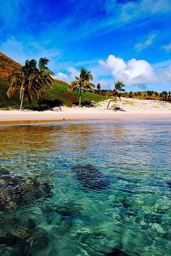 Anakena beach, Easter Island  Esas mariposas en la panza también son por #viajar! La misteriosa Isla de Pascua, es la mayor isla de Chile Insular, es considerada la isla habitada más remota del planeta y declarada Patrimonio de la Humanidad por la Unesco... playas con arenas de color rosa, como la de Ovahe; volcanes y praderas, fauna marina, descúbrelas!#tienesqueir