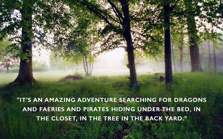 """""""It's an amazing adventure searching for dragons and faeries and pirates hiding under the bed, in the closet, in the tree in the backyard.""""  MG Schoombee Author - Arach Series www.readarach.com  #fantasy #arach #adventures #dragons #faeries"""