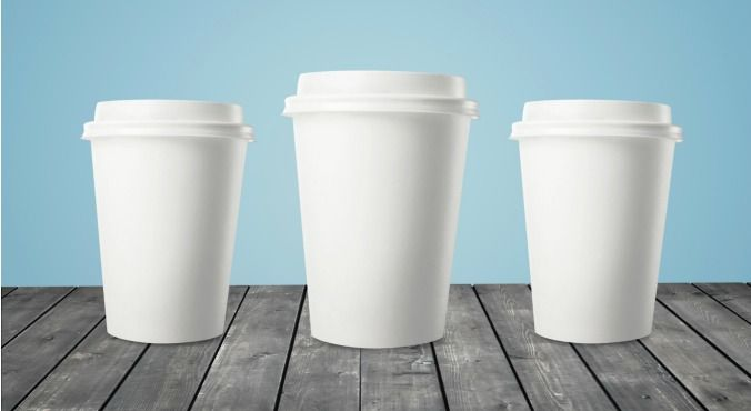 Takeaway Coffee Cups Google Search Dissertation Presentation Pinterest