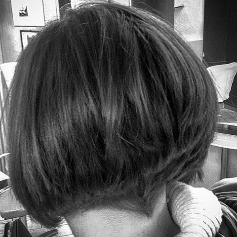 hair style pony 74 best images about bob undershave on bobs 7866