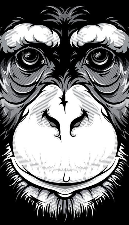 Wild Stares by Bernard Salunga, via Behance