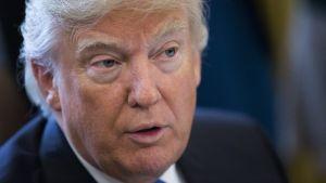 """Donald Trump: """"A tortura funciona. Devemos combater o fogo [Estado Islâmico] com o fogo"""""""