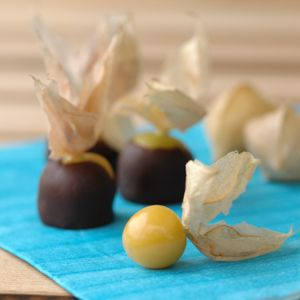 great idea to dunk the physalis in chocolate by holding the leaves