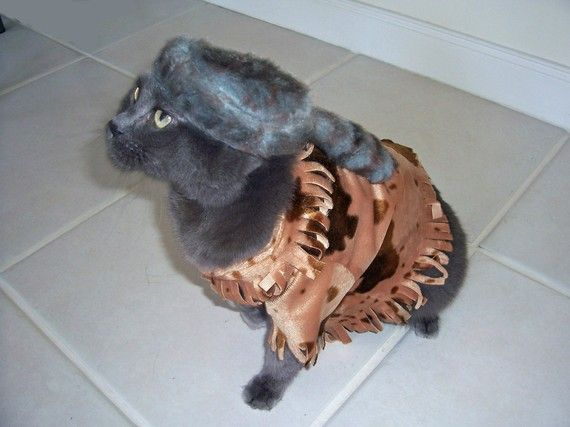 Kitty Boone! Pet Cat Costumes