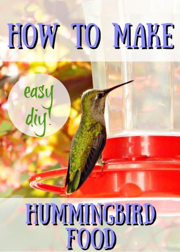How To Make Hummingbird Nectar Recipe With Images