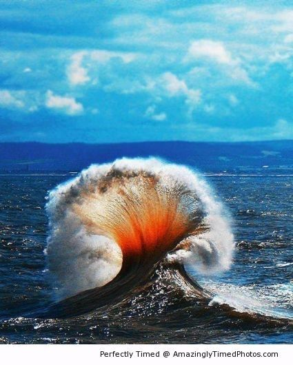 Waves create a sea shell | Amazingly Timed Photos