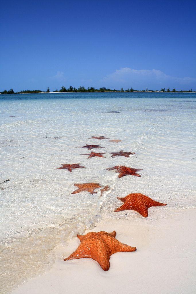 Playa Paraíso, Cuba                                                                                                                                                                                 Más