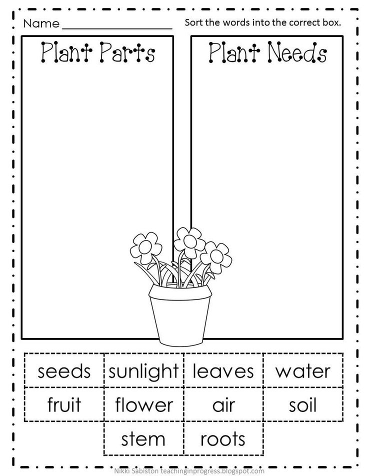 Plant Parts and Functions Cut and Paste Activities | Activities ...