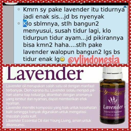 Testi_lavender