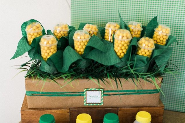 Anders Ruff Custom Designs, LLC: John Deere Tractor Party