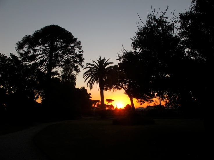 Sunset at the gardens