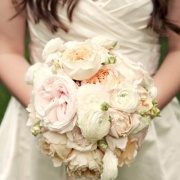 Soft blush roses, ranunculus and peach/coral garden roses