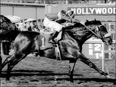"""The 1980's John Henry, voted the racehorse of the decade also becoming the first horse to surpass $4 million in career earnings in 1983. He was named after the """"steel-driver"""" folk hero. In addition to his 39 wins, he became the only horse to nab first place twice for both the Arlington Million and Santa Anita Handicap. After his last race at the 1984 Ballatine Scotch Classic, he retired in 1985 as the world's richest thoroughbred."""