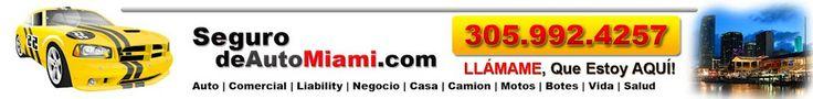 Seguro de Auto por Internet Miami Fl. Seguro de Auto Online en Miami Fl. Conseguir, Comprar un Seguro para mi Carro en Internet.
