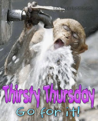 funny thirsty thursday pics | thirsty thursday go for it