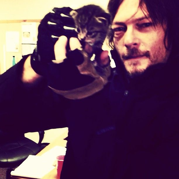 Norman Reedus tweeted this pic of him with a kitten found on TWD set 8/27/13.