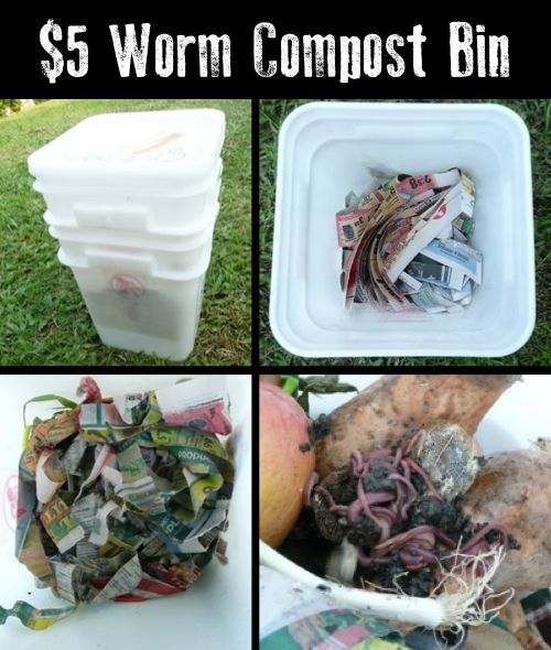 build a worm farm instructions