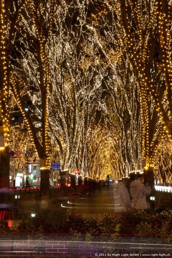 At Christmas time - Pageant of Starlight, Sendai, Miyagi, Japan