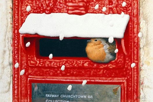 Robin Sheltering in a Victorian Letterbox