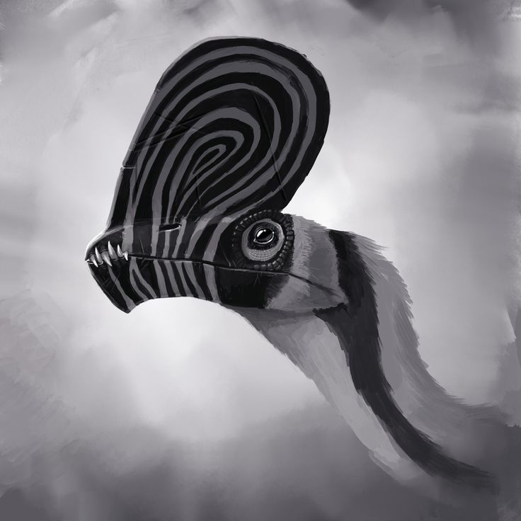 Caviramus by Alexander Ostrowski on ArtStation