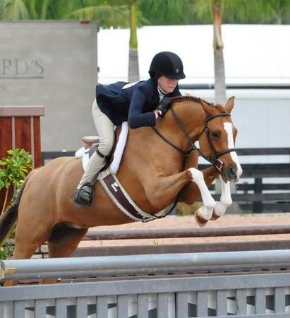 Hollister- Qualified for Pony Finals! - Hunter