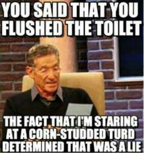 6c7ec008747966d669ecdf25dfe32700 hangover meme bernie sanders 74 best maury images on pinterest ha ha, funny memes and funny stuff