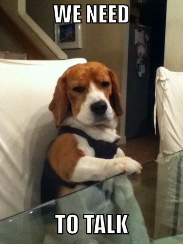 Bad news Beagle needs to talk to you