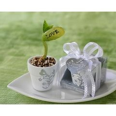 Wedding Favours - Love Beans for R15.00