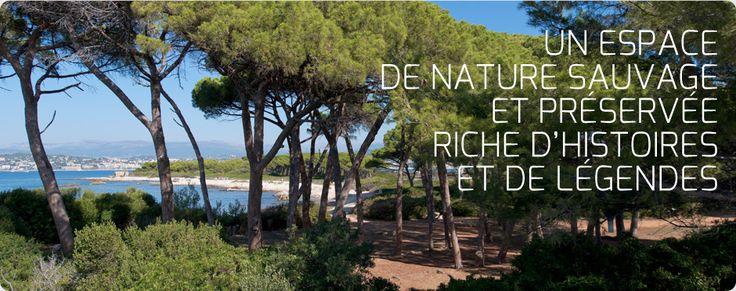 Croisière Île Sainte Marguerite, départ de Nice - Trans Côte d'Azur - Compagnie maritime