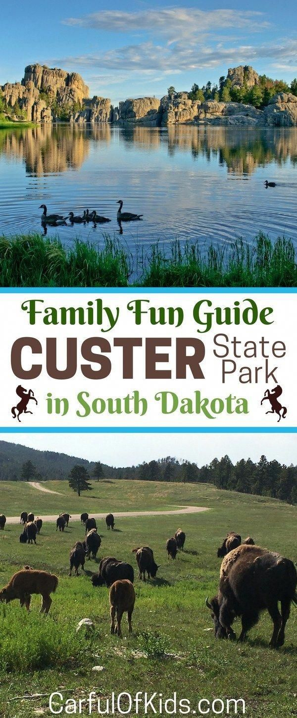 What to do in Custer State Park with Kids Custer state