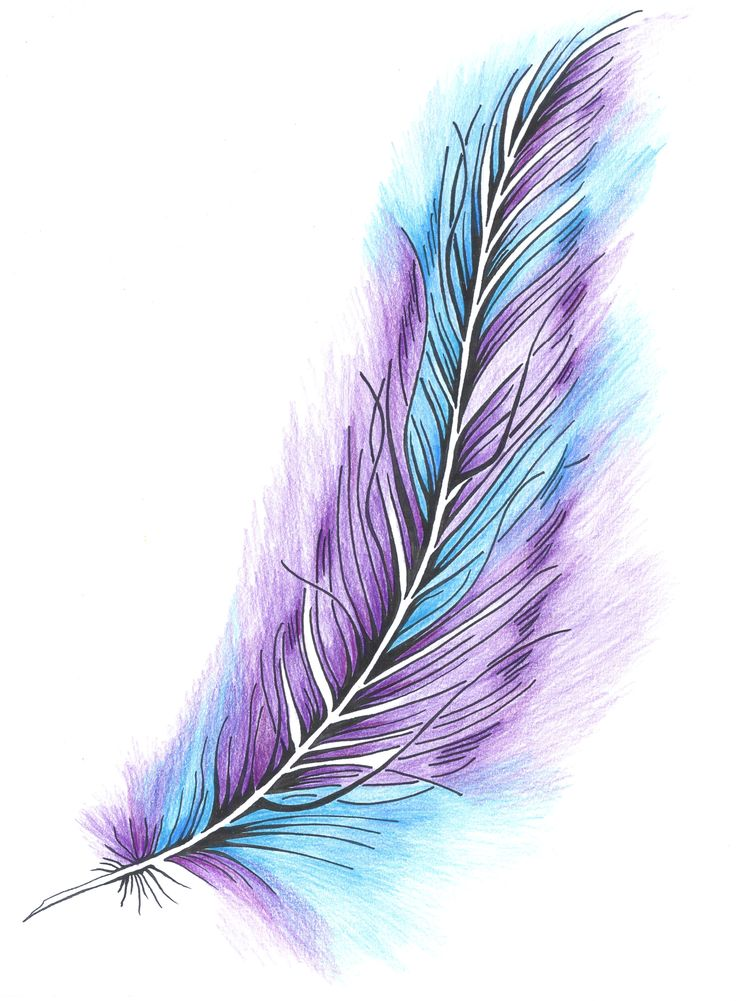 original tattoo design, feather with color