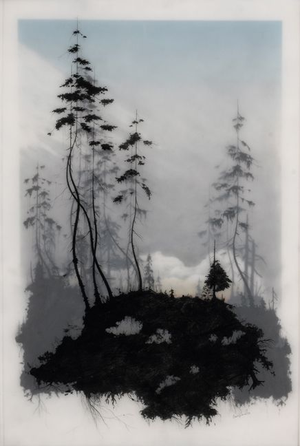 LA-based mixed media artist Brooks Shane Salzwedel assembles beautiful natural landscapes, often featuring some form of majestic architecture like bridges and oil drilling towers. The artist primarily works with graphite, tape, and resin to produce these layered images, giving each one a three-dimensional feel. The separation that defines the difference between foreground and background is expressed through a sheet of fogginess. A dark, sharp silhouette of the setting stands out against the…