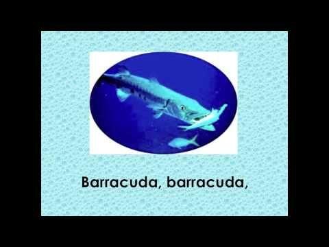La belle pieuvre - YouTube
