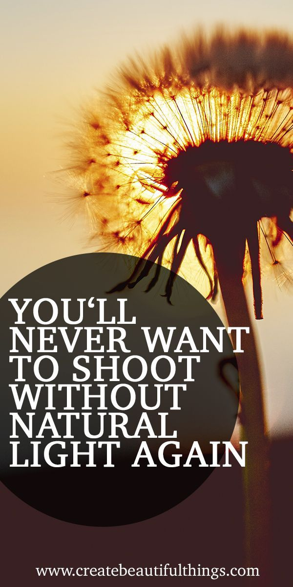 5 reasons photographers love natural lighting – explore the challenge