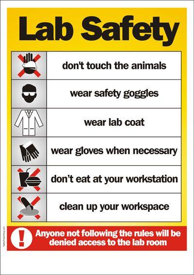 Lab Safety Lab Safety Poster Scientific Method Pinterest Lab - chemistry safety