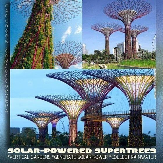 12 best solar tree images on pinterest renewable energy solar solar trees sciox Image collections