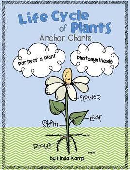 Plant unit anchor charts {FREEBIE}