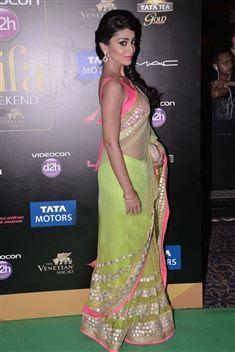 Enchanting Shriya Saran IIFA Awards 2013 Bollywood Replica Saree.