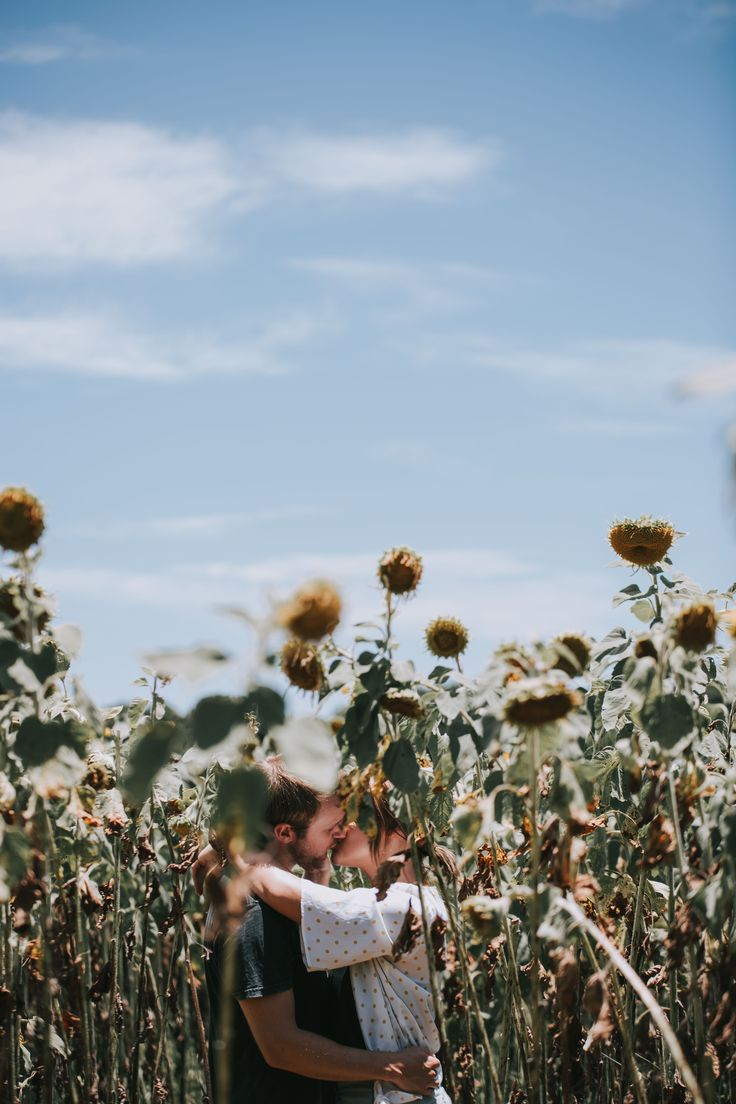 Salt Media - Gold Coast Wedding Photography. He proposed in the Sunflowers!!